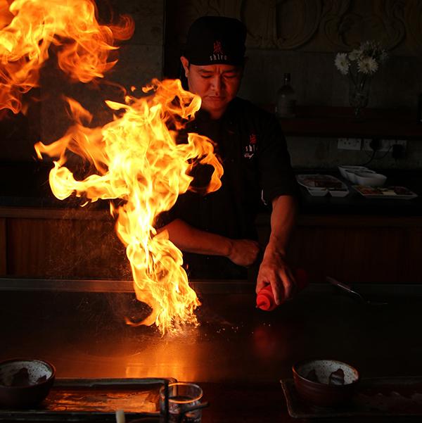 Teppanyaki Yakitori Grill Cooking