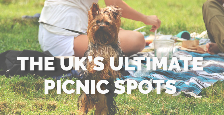 The UK's Ultimate picnic spots