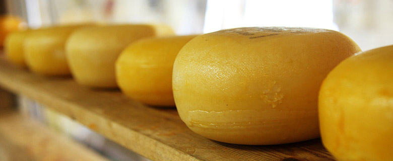 Is cheese a super food?