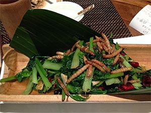 mealworm-dish